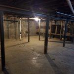 Buffalo Mold Removal Services