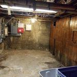 Mold Remediation Contractors in Buffalo NY